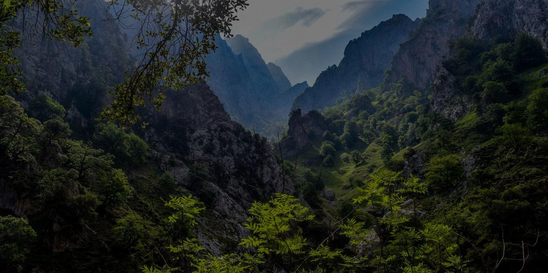 Picos de europa 2775457 1920